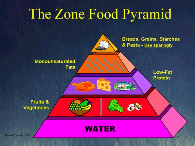 Zone food pyramid, 1997