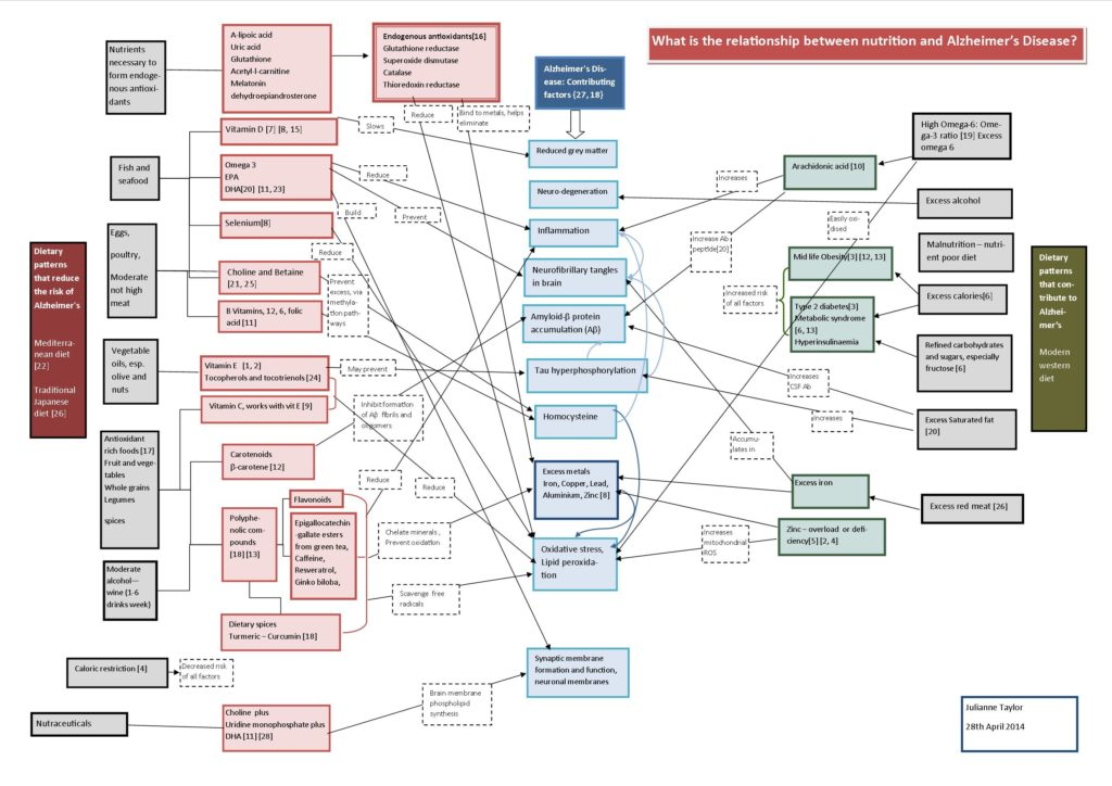 Alzheimers and diet concept map (3)